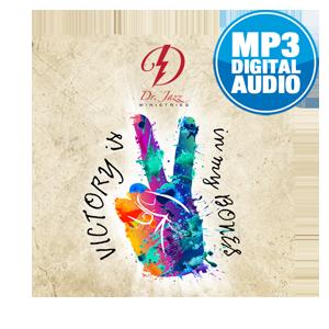 VIIMB-MP3-300x300